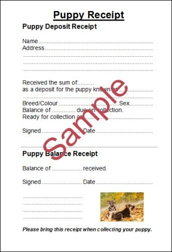 Dog Sales Agreement Best Dog Leash